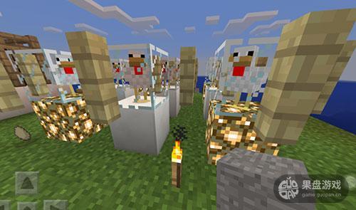 图片3:展览鸡.jpg