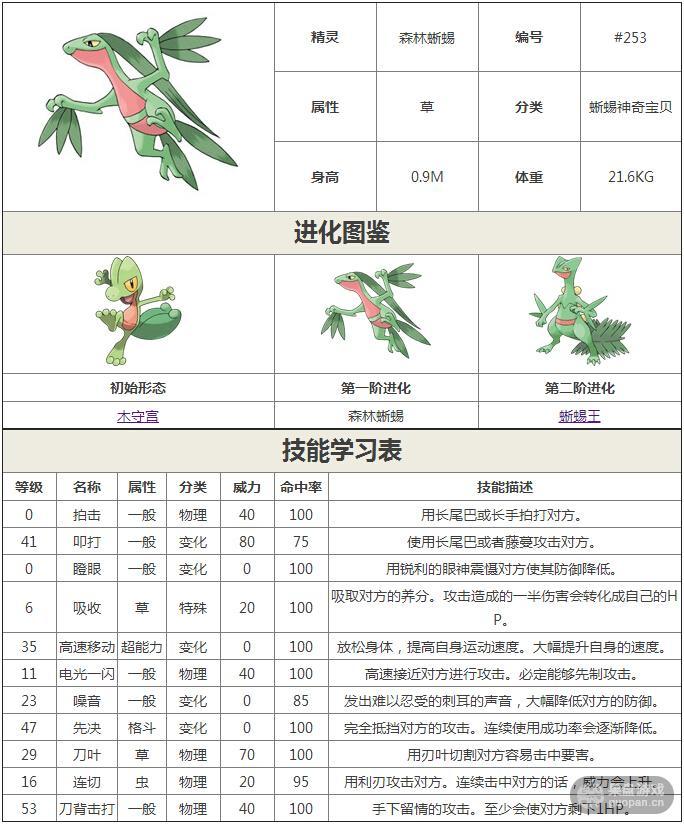 森林蜥蜴.jpg
