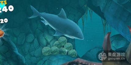 邓氏鲨.png