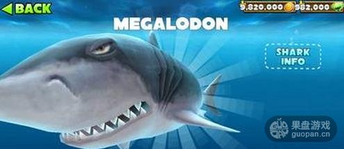 大白鲨.png